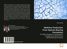 Copertina di Methane Production From Hydrate Bearing Formations