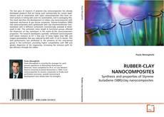 Couverture de RUBBER-CLAY NANOCOMPOSITES