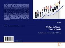 Portada del libro de Welfare to Work - Does it Work?