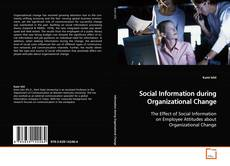 Bookcover of Social Information during Organizational Change
