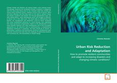 Urban Risk Reduction and Adaptation kitap kapağı