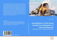 Bookcover of Investigation in Ash Issues during Co-combustion of Coal and Biomass