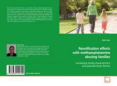 Bookcover of Reunification efforts with methamphetamine abusing families