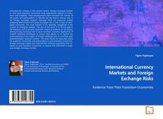 Обложка International Currency Markets and Foreign Exchange Risks