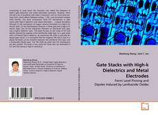 Gate Stacks with High-k Dielectrics and Metal Electrodes的封面