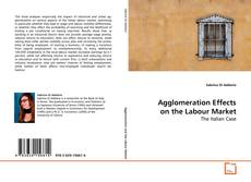 Copertina di Agglomeration Effects on the Labour Market