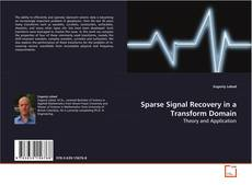 Copertina di Sparse Signal Recovery in a Transform Domain