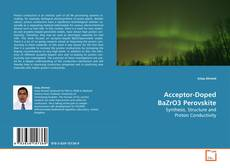 Bookcover of Acceptor-Doped BaZrO3 Perovskite