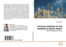 Bookcover of PHYSICAL MAPPING OF SSR MARKERS IN BREAD WHEAT