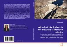 Capa do livro de A Productivity Analysis in the Electricity Generation Industry