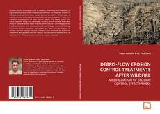 DEBRIS-FLOW EROSION CONTROL TREATMENTS AFTER WILDFIRE的封面