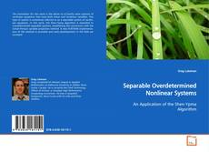 Buchcover von Separable Overdetermined Nonlinear Systems