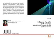 Buchcover von Pulp and Paper in North America