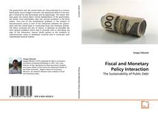 Fiscal and Monetary Policy Interaction kitap kapağı