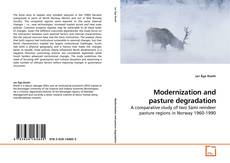 Buchcover von Modernization and pasture degradation