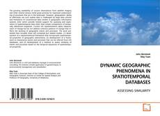 Обложка DYNAMIC GEOGRAPHIC PHENOMENA IN SPATIOTEMPORAL DATABASES
