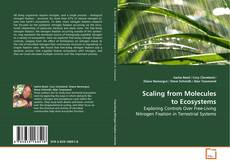 Bookcover of Scaling from Molecules to Ecosystems