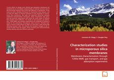 Bookcover of Characterization studies in microporous silica membranes