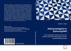 Bookcover of Mehrsprachigkeit im Spannungsfeld