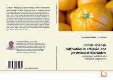 Borítókép a  Citrus sinensis cultivation in Ethiopia and postharvest biocontrol - hoz