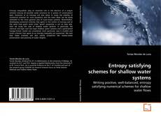 Bookcover of Entropy satisfying schemes for shallow water systems