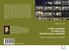 Bookcover of A BRIEF SUMMARY OF FIRM-LEVEL TECHNOLOGICAL LEARNING