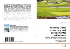 Balancing water productivty and environmental performance的封面