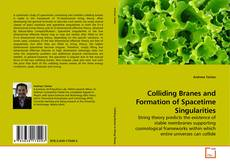 Bookcover of Colliding Branes and Formation of Spacetime Singularities