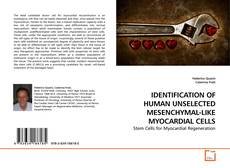 Bookcover of IDENTIFICATION OF HUMAN UNSELECTED MESENCHYMAL-LIKE MYOCARDIAL CELLS