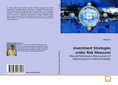Copertina di Investment Strategies under Risk Measures
