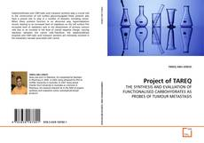Bookcover of Project of TAREQ