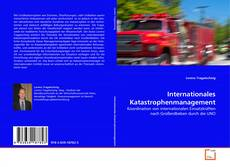Bookcover of Internationales Katastrophenmanagement