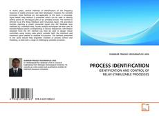 Couverture de PROCESS IDENTIFICATION