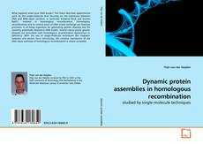 Capa do livro de Dynamic protein assemblies in homologous recombination