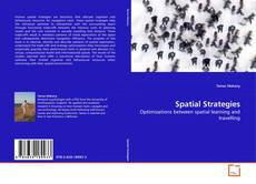 Bookcover of Spatial Strategies