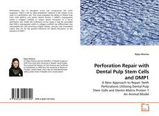 Bookcover of Perforation Repair with Dental Pulp Stem Cells and DMP1