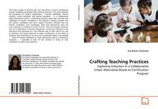 Crafting Teaching Practices的封面
