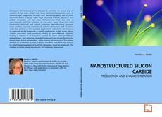 NANOSTRUCTURED SILICON CARBIDE kitap kapağı