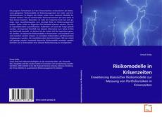 Bookcover of Risikomodelle in Krisenzeiten