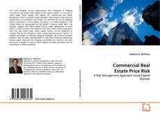 Borítókép a  Commercial Real Estate Price Risk - hoz