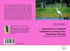Bookcover of Assessment of wetland conditions in Jimma area, southwest Ethiopia