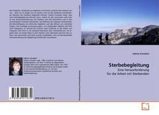 Capa do livro de Sterbebegleitung