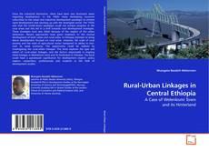 Rural-Urban Linkages in Central Ethiopia kitap kapağı