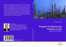 Bookcover of Prospect of Natural Gas Industry in Iran