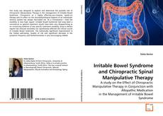 Copertina di Irritable Bowel Syndrome and Chiropractic Spinal Manipulative Therapy