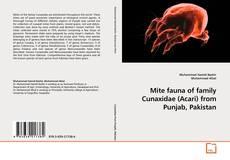 Обложка Mite fauna of family Cunaxidae (Acari) from Punjab, Pakistan