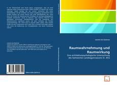 Bookcover of Raumwahrnehmung und Raumwirkung