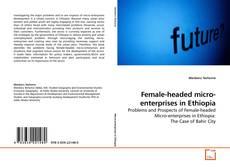 Bookcover of Female-headed micro-enterprises in Ethiopia