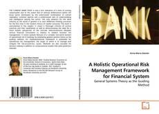 Buchcover von A Holistic Operational Risk Management Framework for Financial System