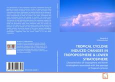 Bookcover of TROPICAL CYCLONE INDUCED CHANGES IN TROPOPOSPHERE